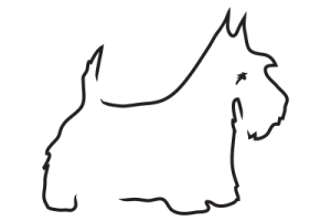 Inverallan Pets Treats and Dog Toys Logo